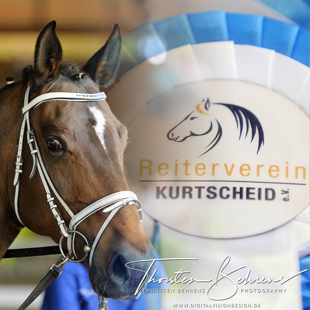 Portfolio - Voltigierturnier 2018 des RV Kurtscheid e.V. auf dem Pferdesportzentrum Gut Birkenhof in Bonefeld (Rheinland-Pfalz)