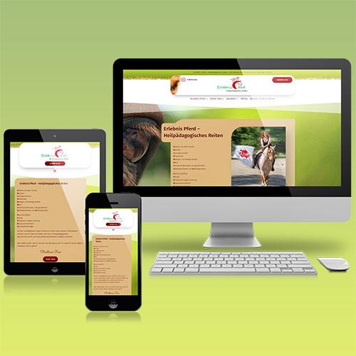Moderne Website (CMS WordPress, responsive Webdesign und Hosting) für die Annette-Schlichte-Steinhäger Stiftung: ERLEBNIS PFERD - Heilpädagogisches Reiten [... https://www.erlebnis-pferd.com/ ...]
